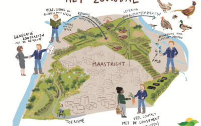 Visualizing the future of agriculture in the Dutch case studies