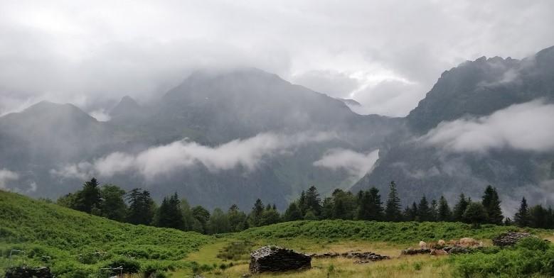 Improving funding scheme for landscape-scale agri-environmental management