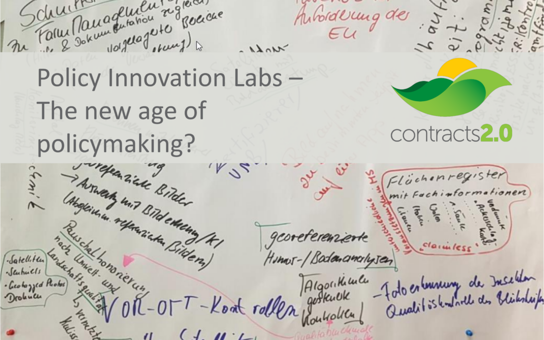 Policy Innovation Labs – The new age of policymaking?